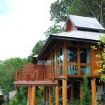 Perfect Dwellings