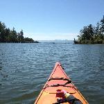Be sure to take a kayak tour