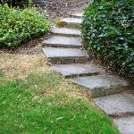 Stone steps in main yard