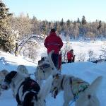 Dog sledding in Peer Gynt Rike