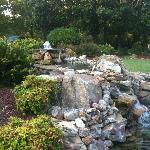 Water feature at Hilltop