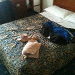 da notare lo spazio attorno al letto e i cuscini oltre che essere per un pezzo uno sopra l'altro