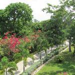 Zona Jardines