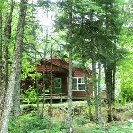 Cabin #4