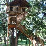 "Our treehouse ""The Peacock's Perch"""