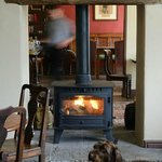 Central Log Fire