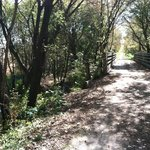 Wiowash Trail