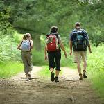 Trekking a piedi nei sentieri circostanti