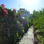 Mikaso walkway