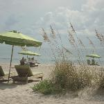 """These green chairs and umbrellas are for """"rent."""""""