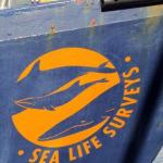 Sea Life Survey