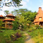 All teak wood cabins