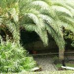 B&B garden