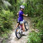 Family Friendly Mountain Biking