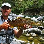 Great Flyfishing