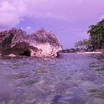 island we snorkeled at