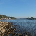 Rhine at Linz