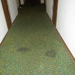 la moquette du couloir menant à la chambre