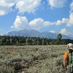 Teton range from LSR Preserve