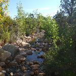 Surprise! Crystal clear brook in the middle of the desert