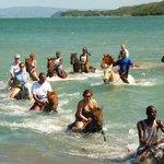 Sandy bay horseback riding