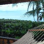Hammock and private balcony