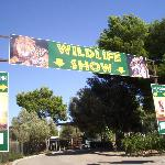 Safari Park Zoo (Wildife show)