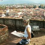 From top of Guinigi Tower