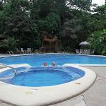 skildpadde pool