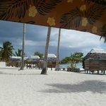 Photo de Falealupo Beach Fales