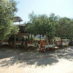 The Oliver Tree restaurant