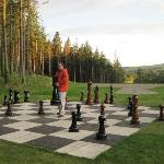 Giant Chessboard on property
