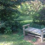 Bench in a shady spot