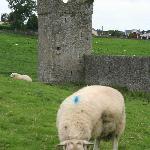 Nearby Kells Priory