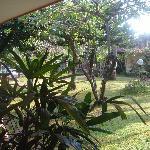 Sari Bali Cottages