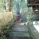 Treppe zur Sauna