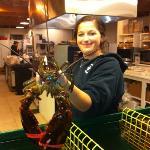 Huge Lobster!
