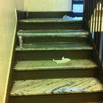 Escalier devant porte entrée appartement
