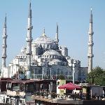 Tout ce que l'on voit de la terrasse Mosquée bleue