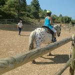 Paseos a caballo en el Vilar