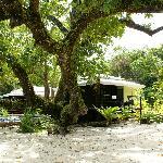 I bungalow sotto gli alberi di Nabangora