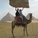 Camel power!