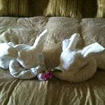 Towel art-bunnies