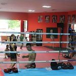 Patong Stadium Muay Thai Gym