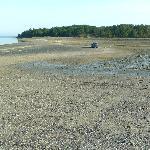 Sand bar exposed and looking toward Bar Island