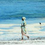 Lady on Bellevue beach