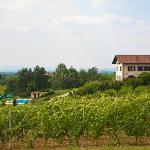 la cascina papa mora vista dalle vigne