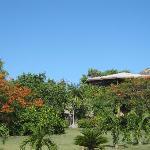 Lodge dal giardino 2