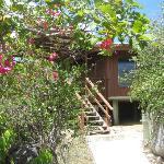 Lodge dal giardino 1