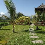 Prachtige tuin, oase van rust en schoonheid
